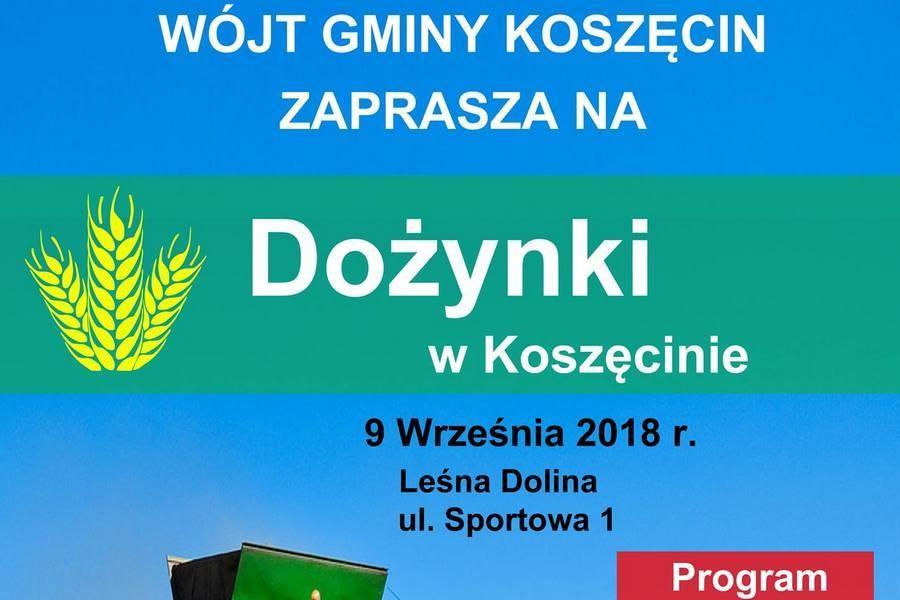 Dożynki w Koszęcinie