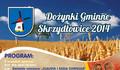 Gminne Dożynki w Skrzydłowicach